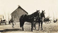 Photo: Henry Umland with horse team