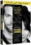 silverliningsplaybookdvd