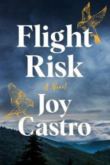 Flight Risk book cover graphic